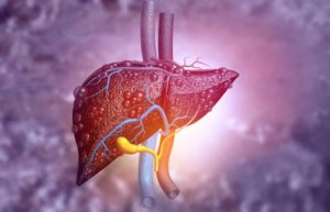 How To Protect Your Liver