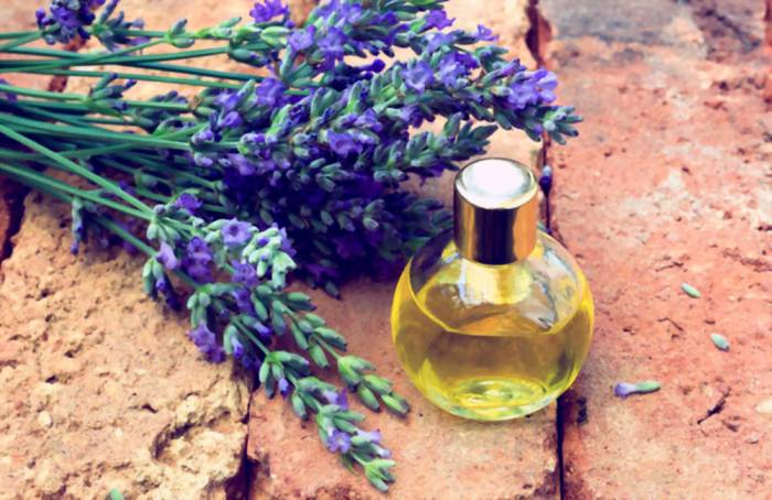 Benefits Of Lavender Oil For The Skin