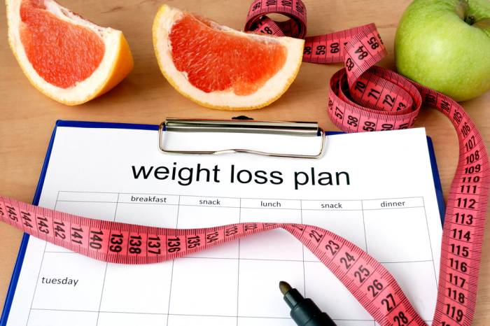 Weight Loss Plans To Lose Weight Faster